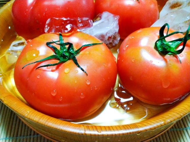 トマト 😊